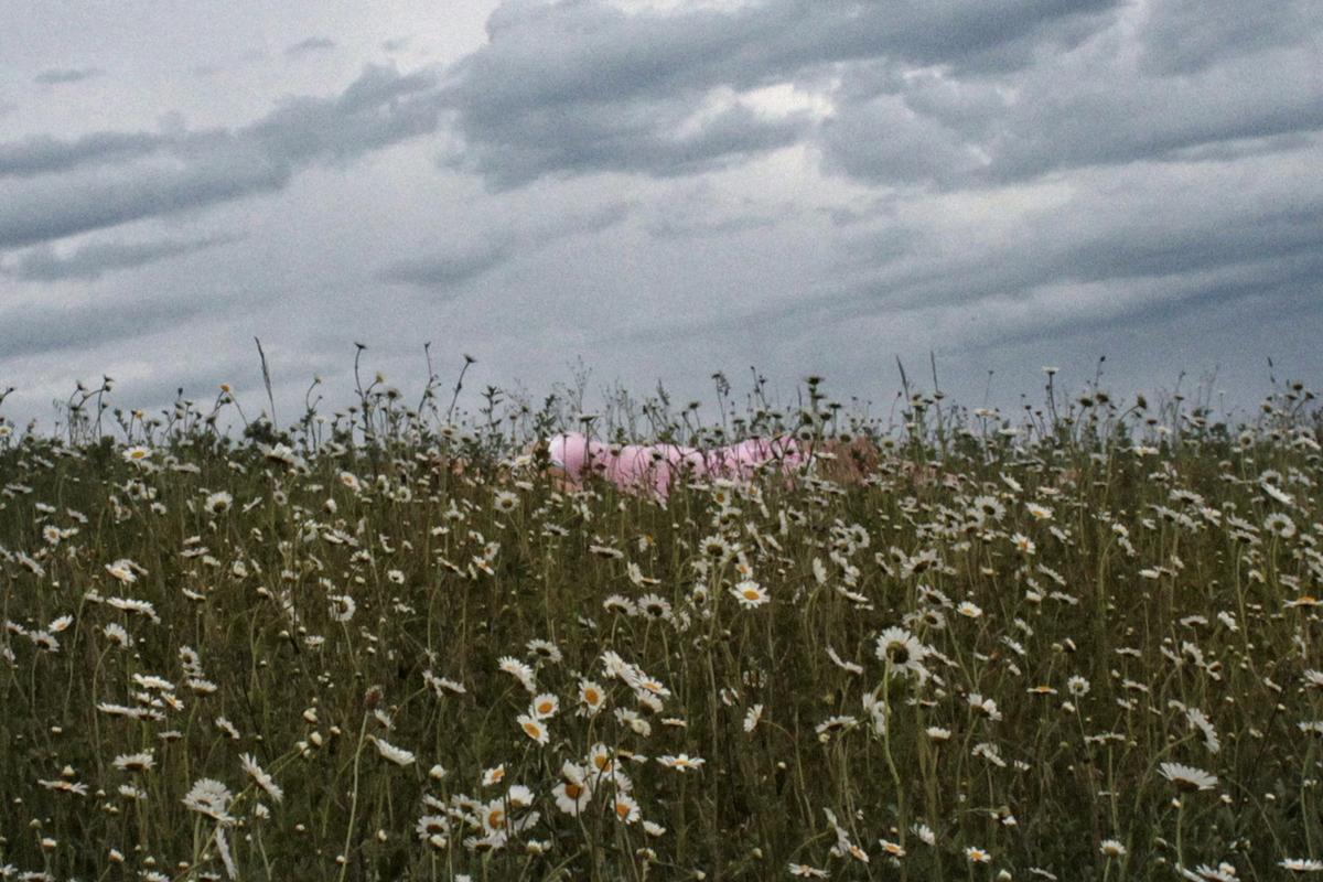 Stampa fotografica su tela con figura sdraiata in mezzo a campo fiorito