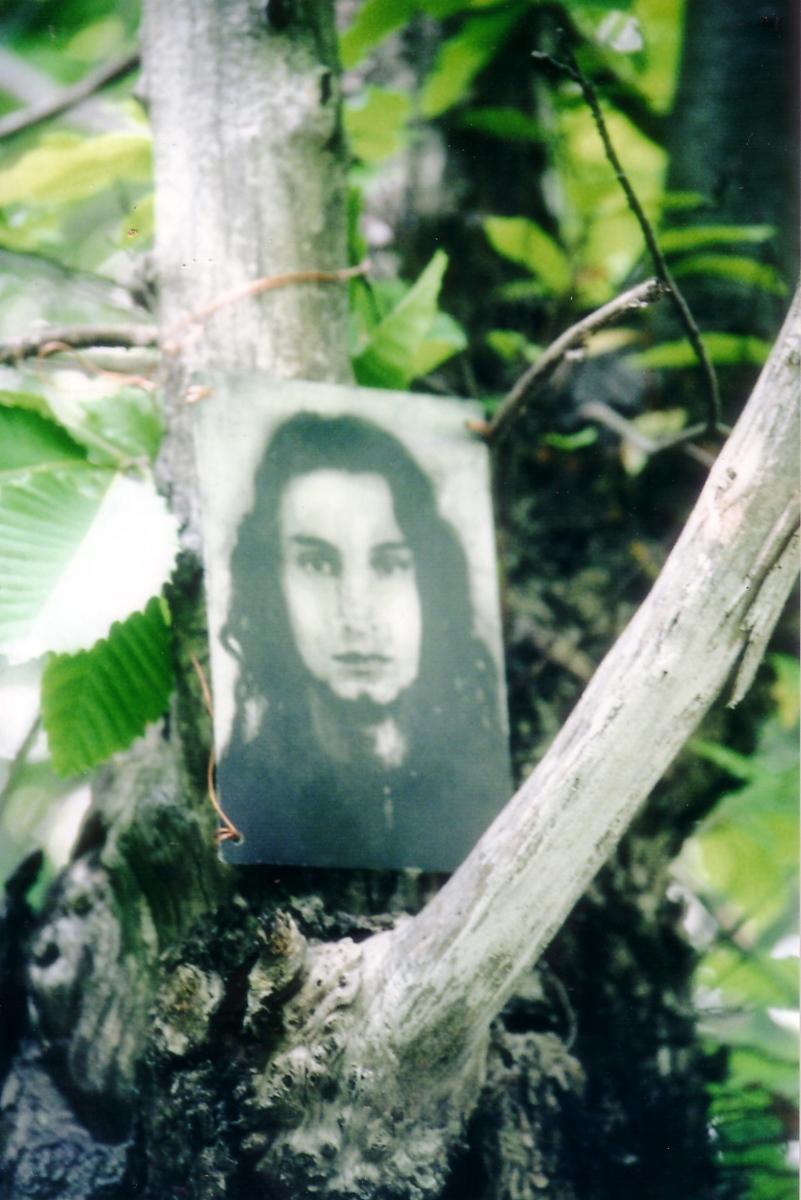 ZN singola matrice ad acquatinta installata su albero con ramo in vista